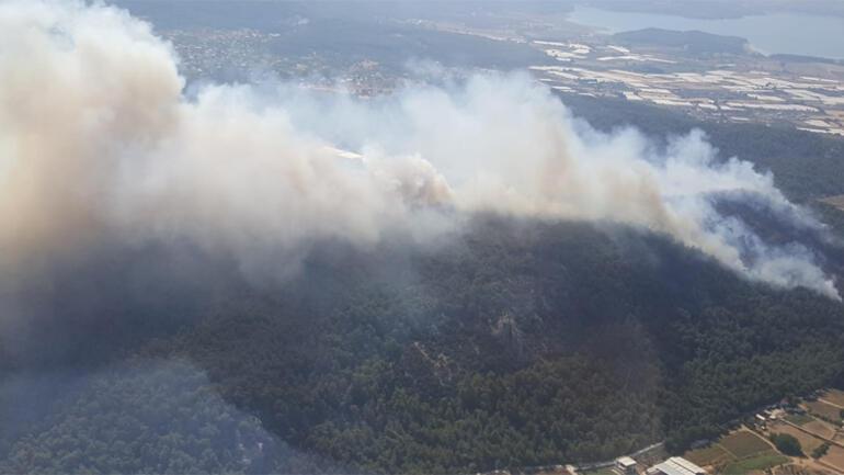 Son dakika... İzmirden orman yangını haberleri peş peşe geldi