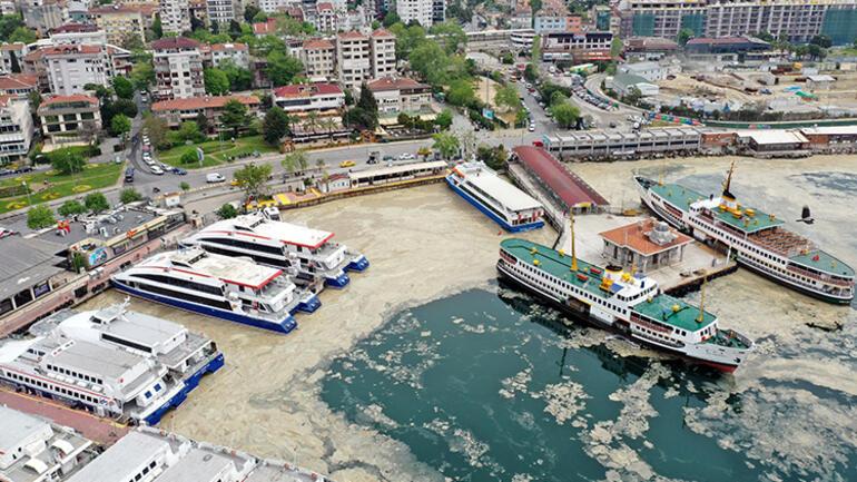 Marmara Denizinde tehlike çanları: 15 senedir böyle bir durumla karşılaşmadım